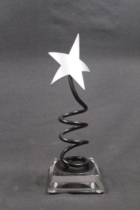 Custom Designed Metal & Wood Trophies